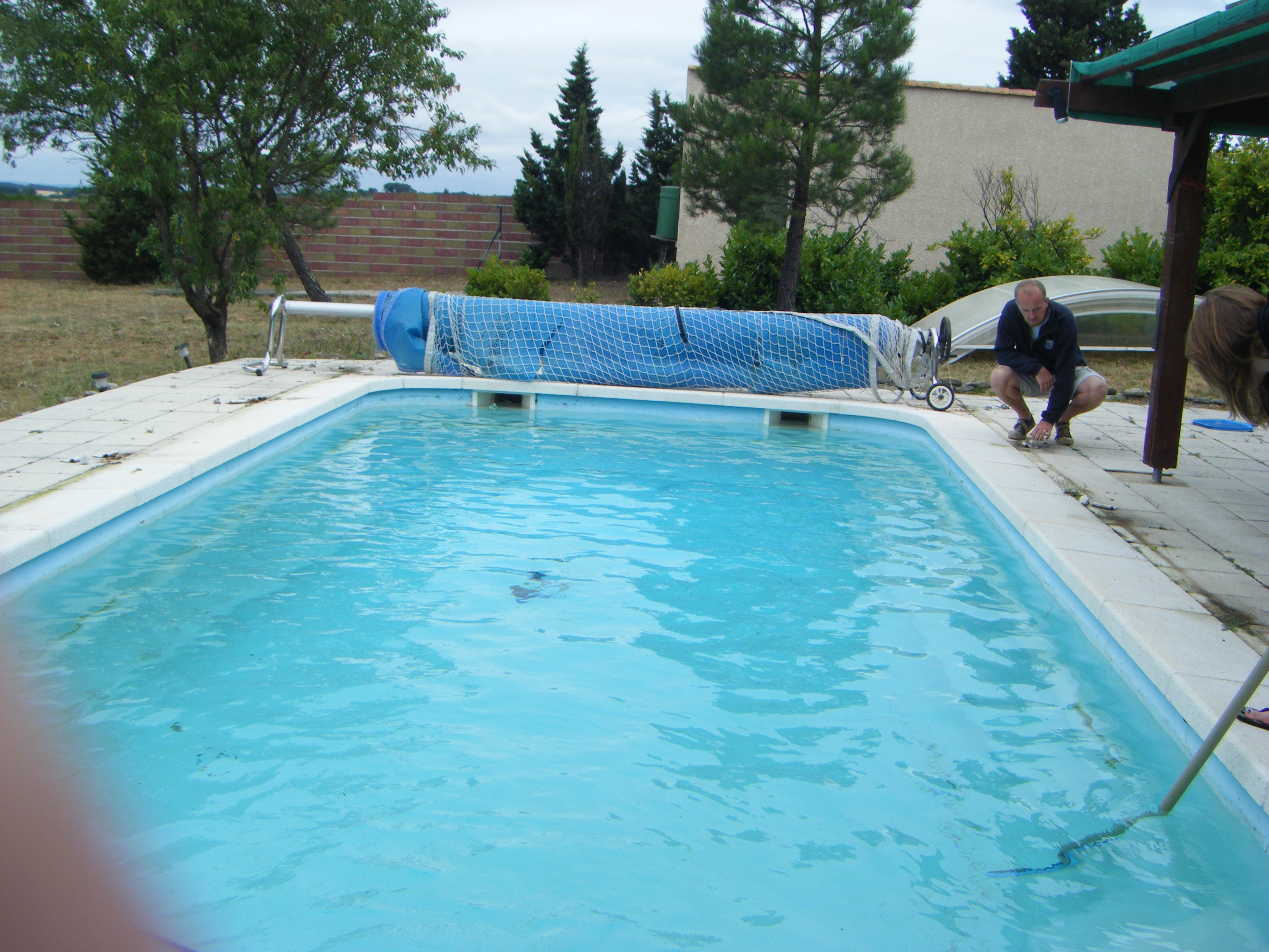 Different pool cleaning services are provided by different experts