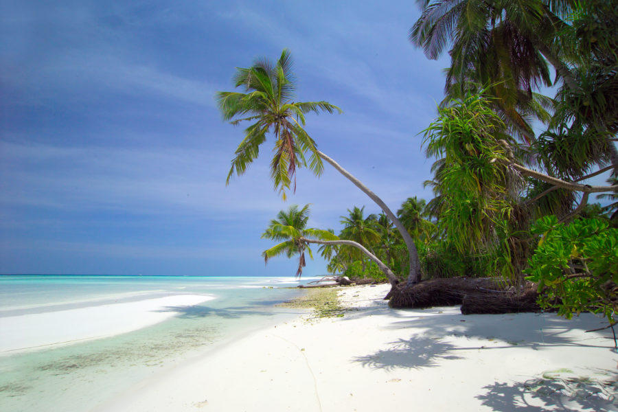 All Inclusive Holidays to Maldives - Cheap hotels and flights