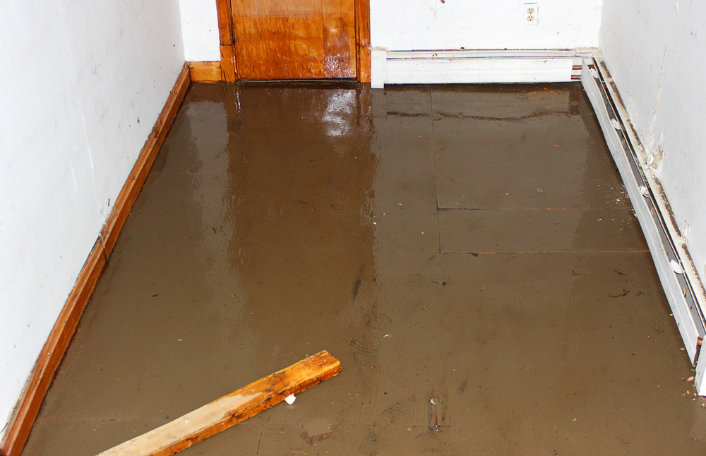 How to Fix a Flooded House